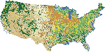 NLCD 1992: Land Cover (Conterminous US)