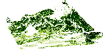 Mangrove Canopy Height Estimates in Zambezi Delta, Mozambique, derived from Airborne Lidar