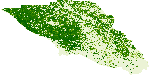 LiDAR-derived biomass predicted, Sonoma County, California, 2013