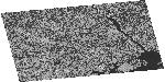 NRCS SAR Image (HH): Baltimore Ecosystem Study (BES1), 2009-07-28